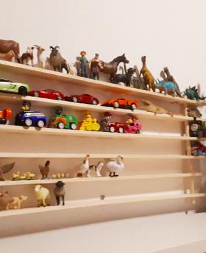 Raft pentru masini si animale