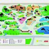 Covoras de joaca copii pentru podea - gradina zoologica + 5 figurine Cadou