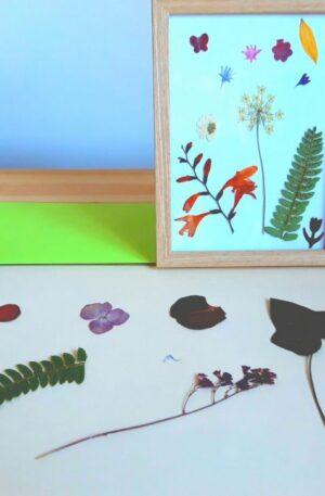 Atelier creativ – ramă cu flori presate